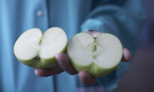 La frescura de la fruta